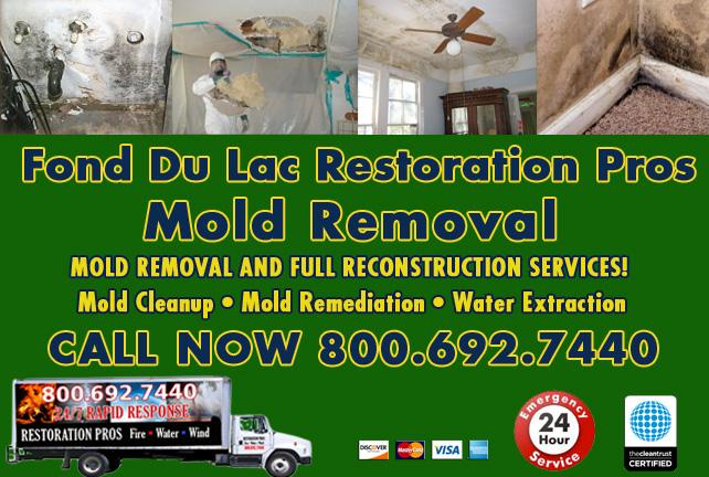 Fond Du Lac mold damage cleanup