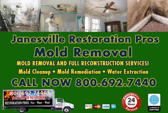 Janesville mold damage cleanup